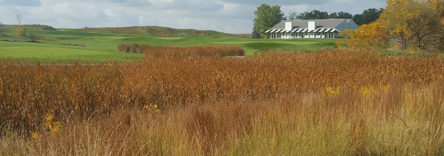 View of the clubhouse past tall grass at Shepherd's Crook